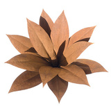 Outdoor Metal Sculpture Foxtail Agave
