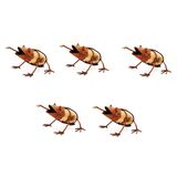 Set 10 Rusted Rock Frogs with Fly Metal Garden Art