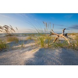 Hilton Head Beach Morning Canvas Wall Art Print