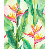 Heliconia Palms Watercolour Canvas Wall Art
