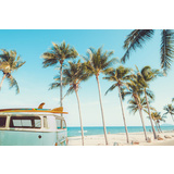 Blue Kombi Palms Canvas Wall Art Print