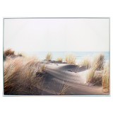 Beach Dune Canvas Wall Print