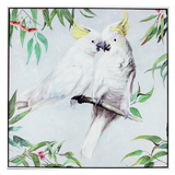 Kissing Cockatoo Canvas Wall Painting