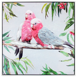 Rosie Galah Canvas Wall Painting