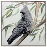 Black Cockatoo Canvas Oil Painting