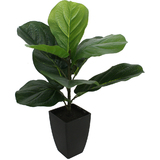 Small Artificial Baby Fiddle Leaf Fig Plant