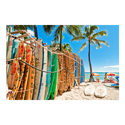 Tropical Surfboards Canvas Wall Art Print